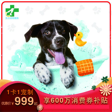 【昆明东方专享】狗狗-无限洗澡卡(精细洗浴年卡) 狗狗10-15kg