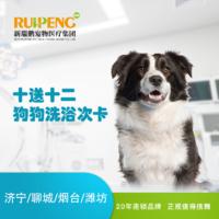 【山东】狗狗洗浴套卡(10送12) 0-6kg