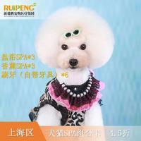 【阿闻上海】犬猫SPA组合卡(市区版) 犬10-15KG