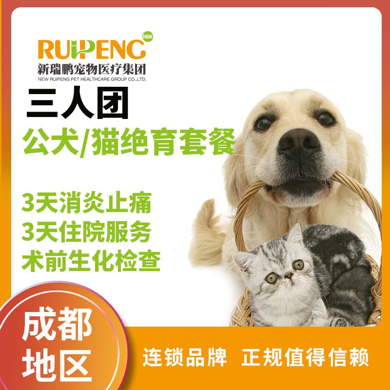 【成都】公犬/猫去势全面护理三人团 ≤5kg