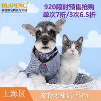 【阿闻上海】920爱宠狂欢节口腔关怀-无麻醉洁牙SPA 单次犬0-10kg