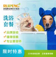 【南京区特惠】犬猫SPA买一送一 猫咪0-2kg