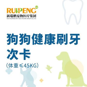 【甬绍温】狗狗健康刷牙次卡(体重≤45KG) 20次