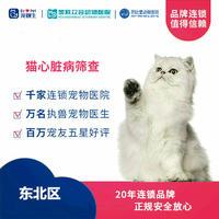 【东北区-新瑞鹏】猫咪心脏病筛查套餐 猫心脏病筛查