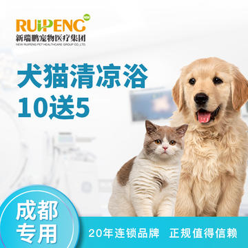 【成都专享】犬猫 -清凉浴买10送5 短毛猫:>8KG