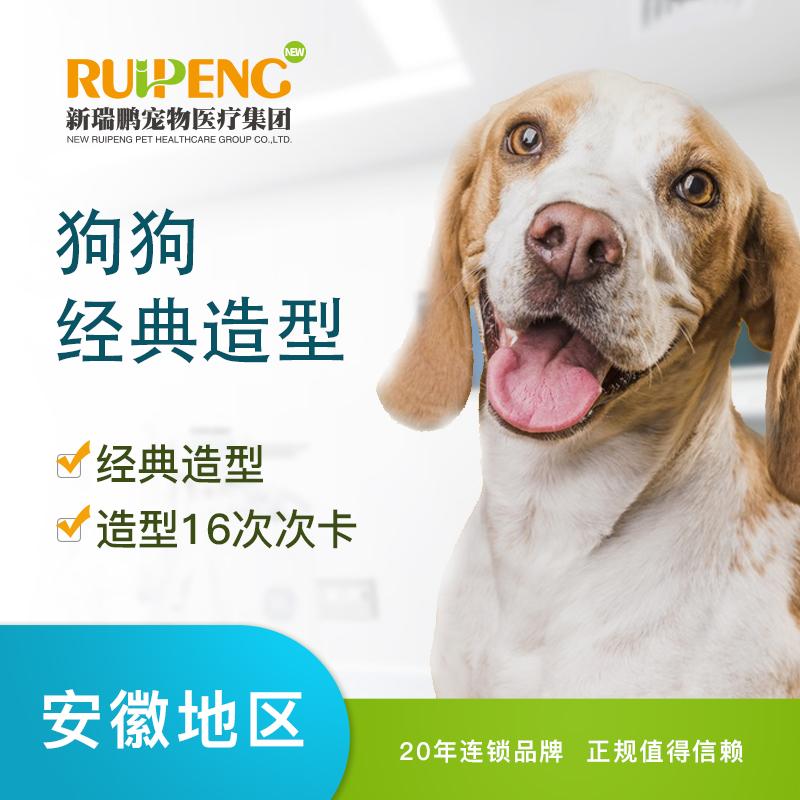 【安徽】犬经典造型(买10送6)(20≤25KG)