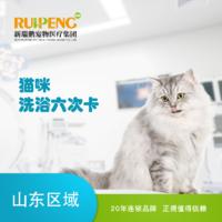 【山东】猫咪洗浴套卡 常规版①