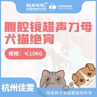 杭州佳雯腹腔镜超声波母犬猫绝育套餐10KG内 母犬猫10KG内