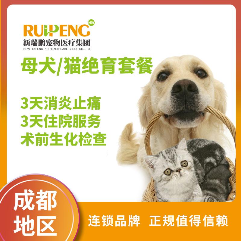 【成都】母犬/猫绝育全面护理套餐 ≤5kg