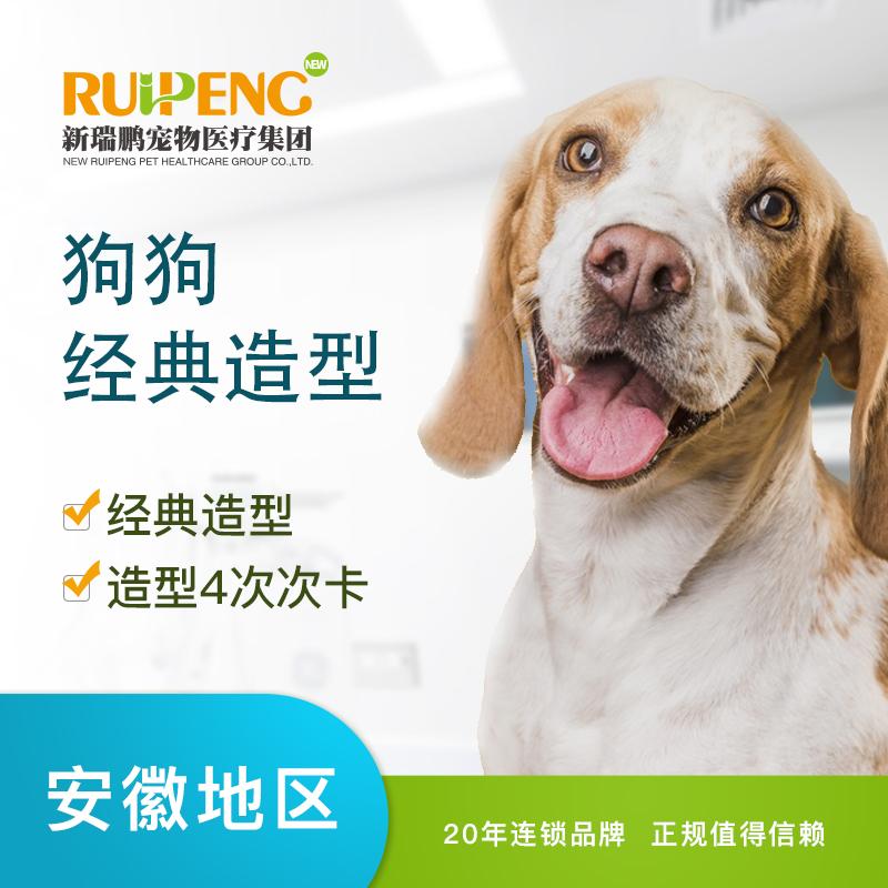 【安徽】犬经典造型(买3送1)(30≤35KG)