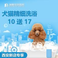 【西安新店专享】犬猫精细洗浴套卡10送17 犬:0-3kg