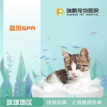 【21年深宠展】深圳瑞鹏盐浴SPA5送5 短毛猫
