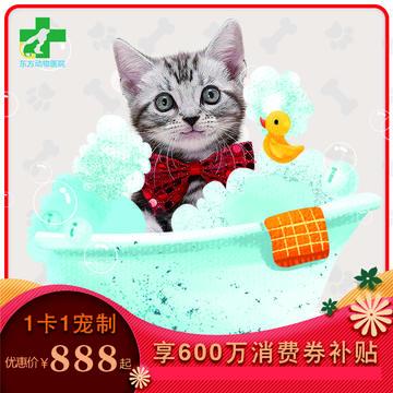 【昆明东方专享】猫咪-无限洗澡卡(精细洗浴年卡) 短毛猫年卡8KG上