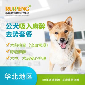 【新瑞鹏华北】爱宠绝育套餐补充包 公犬去势补充包(10kg以内)
