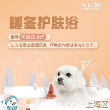 【阿闻上海】双11暖冬犬10送10猫3送3(郊区) 猫8kg以上